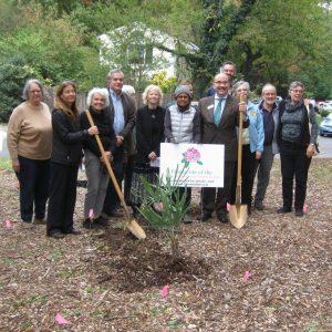 Cent. garden groundbreaking group