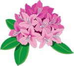 The THC rhododendron logo