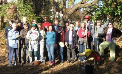 Centennial Garden planting Group